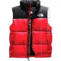Will Anyone Gp This TNF Gilet ?