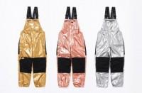Supreme x TNF Metallic Gold Mountain Ski Pants