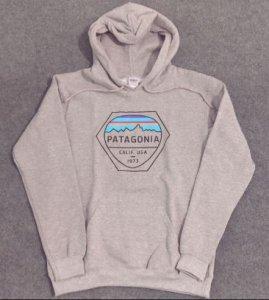 Patagonia Hoodie 2