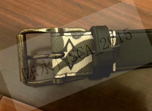 Louis Vuitton Camo Belt