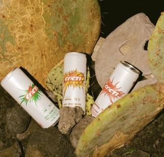 Travis Scott Cacti Drink