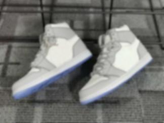 Nike x Dior Air Jordanikers