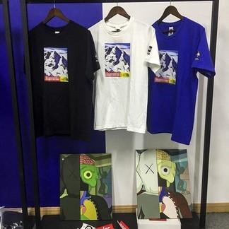 Supreme x TNF Mountain T-Shirt (FW17)