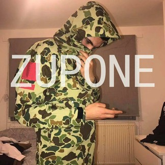 Supreme x TNF Duck Camo Expedition Anorak (SS10)