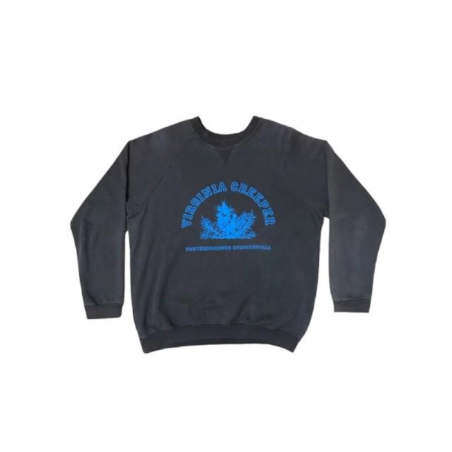 Raf Simons Virginia Creeper sweater