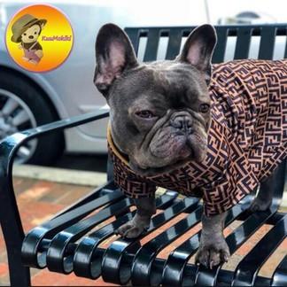 Fendi Dog Costume