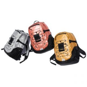 Supreme x TNF Leaf Metallic Backpack